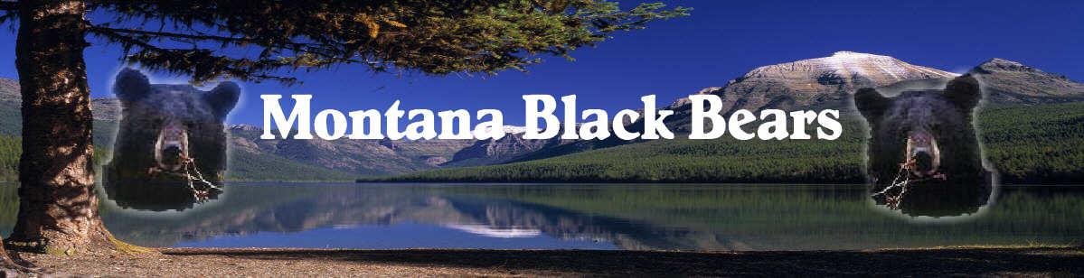 Montana Black Bears